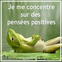 grenouille pensée positive 250x250