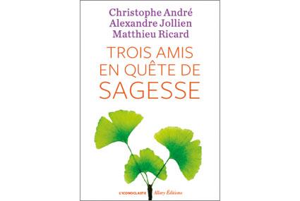 3_amis_en_quete_de_sagesse